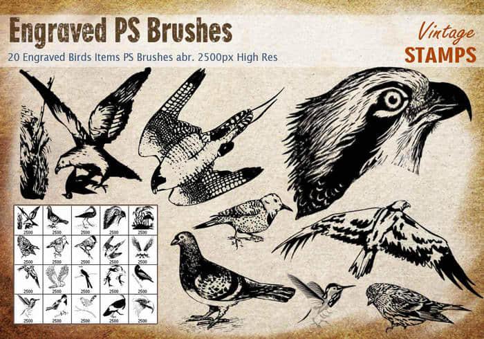 20种版刻式鸟类图案Photoshop鸟笔刷免费下载