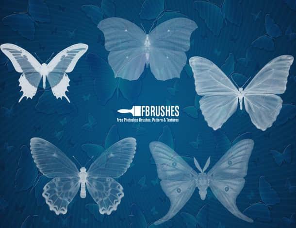 透视蝴蝶图形PS笔刷下载