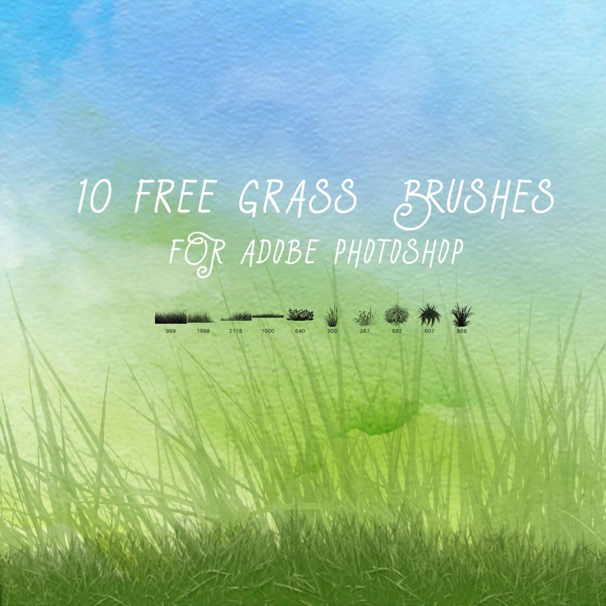 10个免费的绿色小草、青草、草坪Photoshop笔刷下载