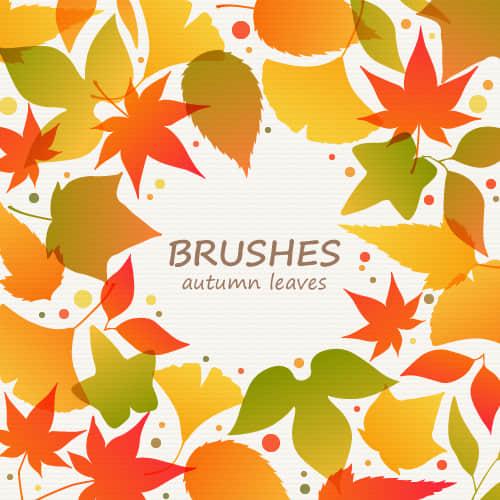 秋天落叶、树叶Photoshop笔刷素材下载 落叶笔刷 秋天树叶笔刷 树叶笔刷  plants brushes