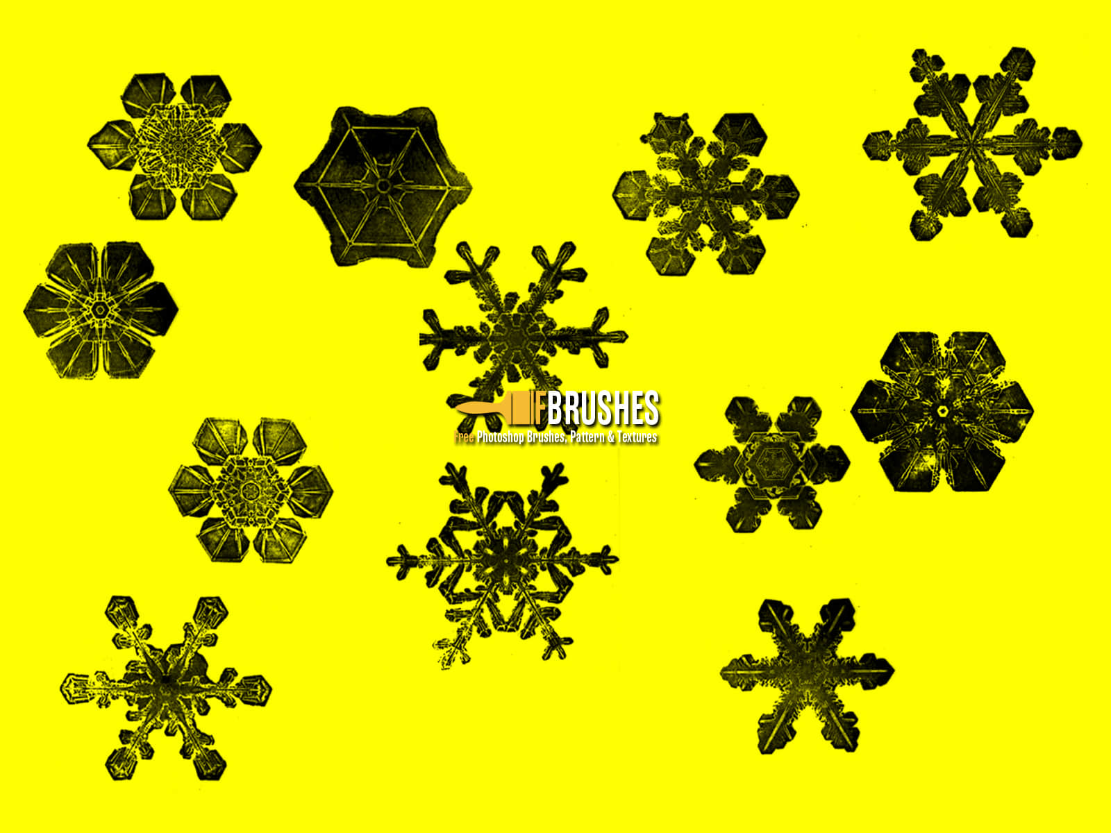 放大的雪花、冰晶图案Photoshop笔刷下载