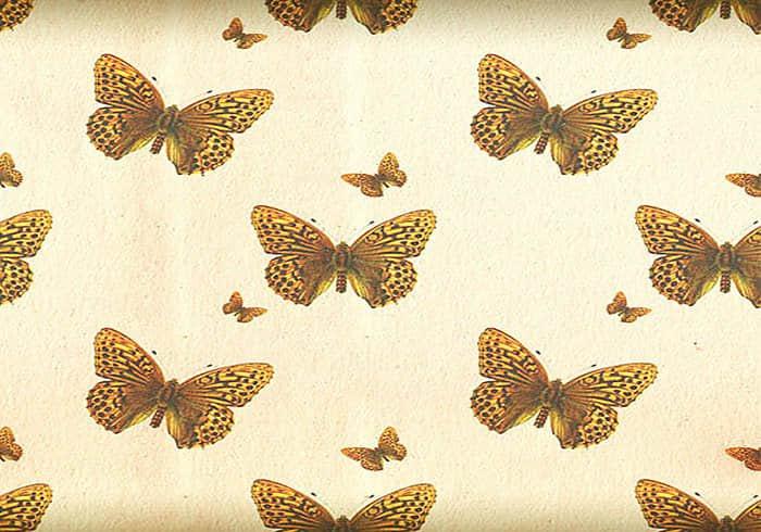 漂亮的蝴蝶图案背景PSD素材下载 蝴蝶素材 蝴蝶笔刷  other material