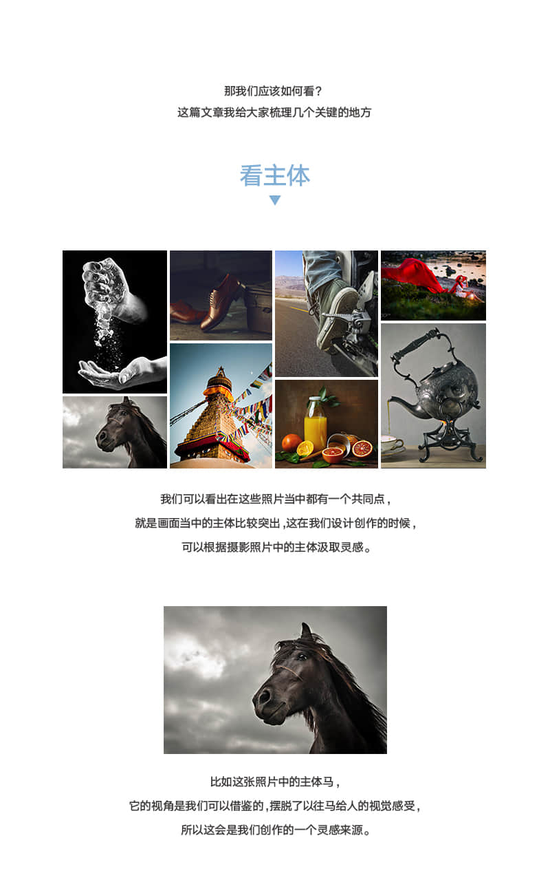 从摄影照片中获得设计灵感 - 大牛进化史
