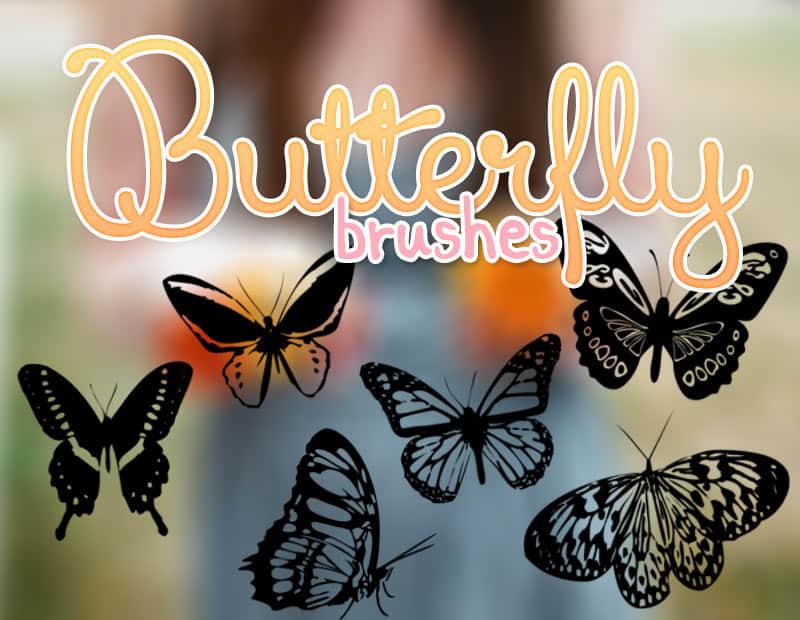 漂亮的蝴蝶Photoshop剪影笔刷 蝴蝶笔刷  insects brushes