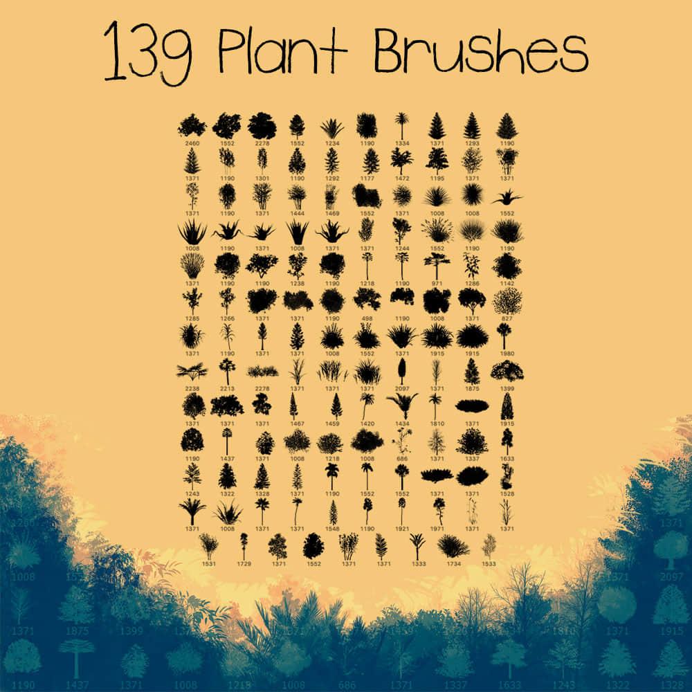 139种植物树木、小草、草丛、灌木图形PS笔刷素材下载 雨林笔刷 草丛笔刷 热带雨林笔刷 灌木笔刷 森林笔刷 树木笔刷 小草笔刷 大叔笔刷 乔木笔刷  plants brushes
