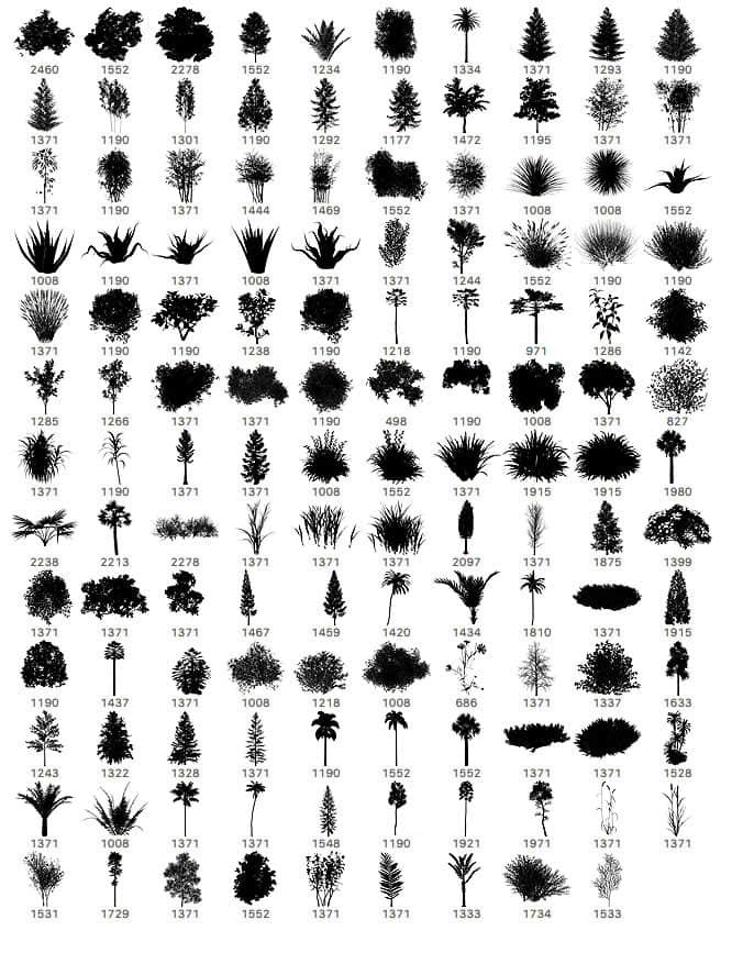 139种植物树木、小草、草丛、灌木图形PS笔刷素材下载