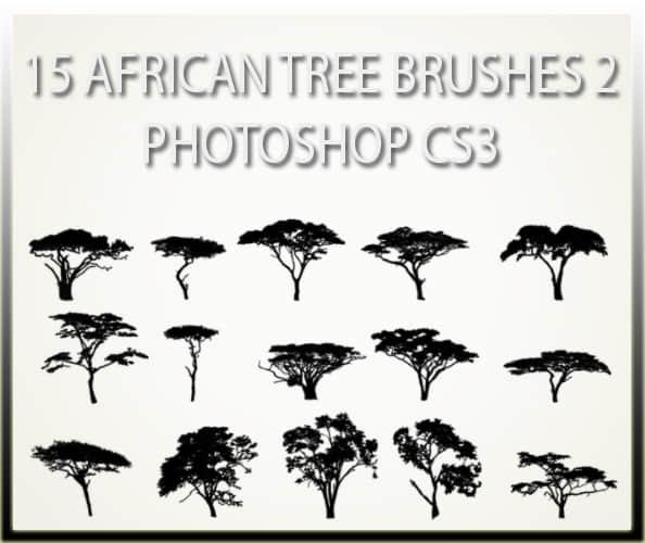 15种非洲草原树木剪影图形PS笔刷素材 树笔刷 树木笔刷 大树笔刷  plants brushes