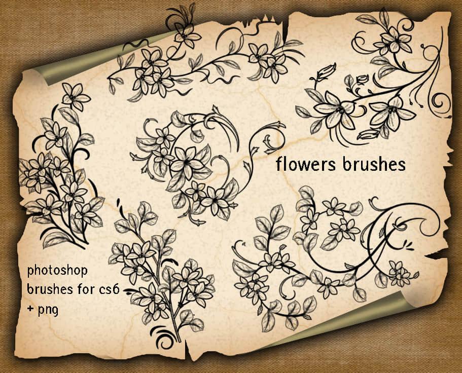 漂亮的手绘欧式鲜花花纹图案Photoshop笔刷下载