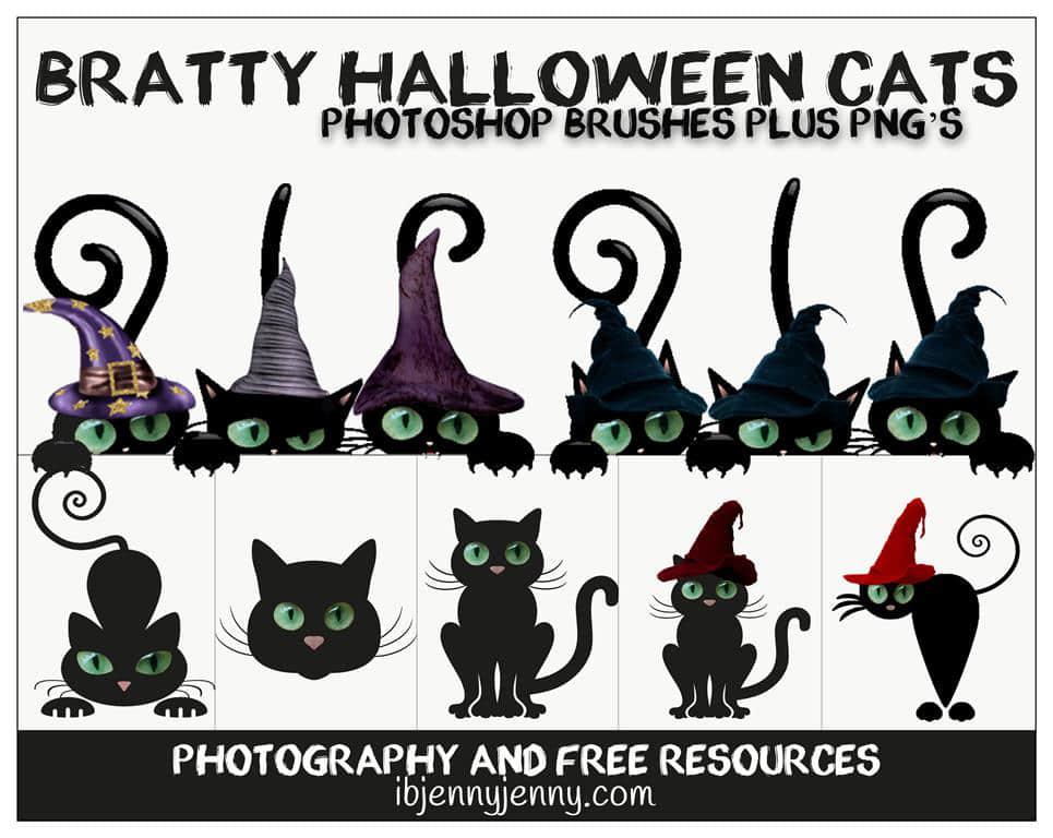 万圣节捣蛋卡通黑猫PS美图笔刷素材