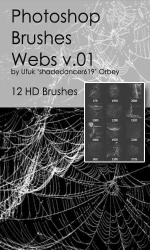 12种高清蜘蛛网、蛛网Photoshop笔刷素材