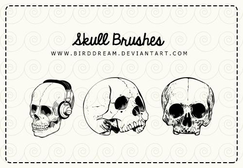 骷髅头造型PS笔刷素材 骷髅头笔刷 头颅笔刷  adornment brushes