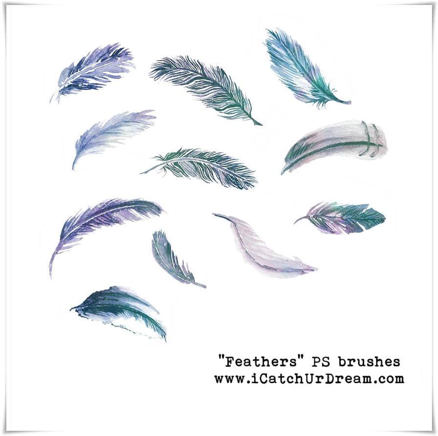 漂亮的水彩、水墨羽毛效果Photoshop手绘羽毛笔刷