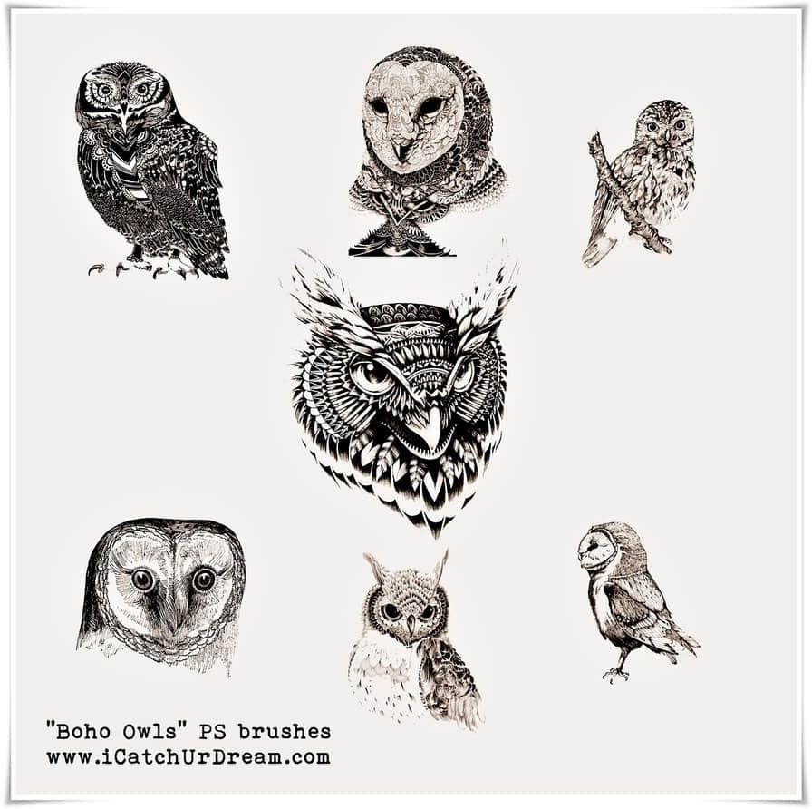 精美的手绘猫头鹰图形Photoshop猫头鹰笔刷 猫头鹰笔刷  %e5%8d%a1%e9%80%9a%e7%ac%94%e5%88%b7