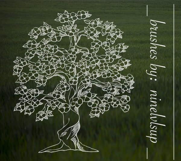 手绘开花的树、大树图形Photoshop笔刷素材免费下载