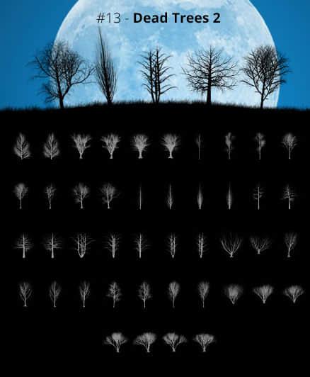 34种各类树木剪影、大树阴影Photoshop树木笔刷