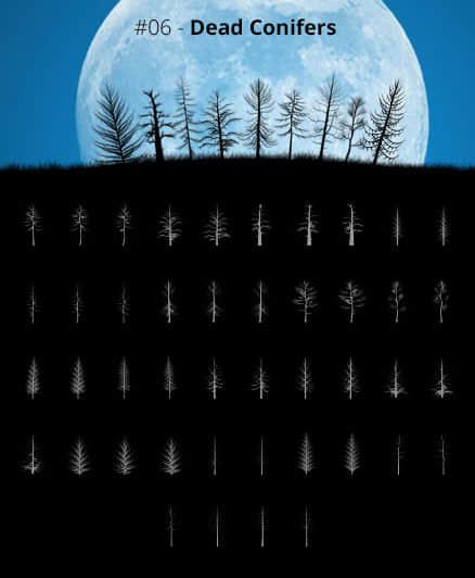 44种树木、大树剪影、大树X光射线造影Photoshop笔刷素材