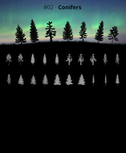 20种大树树木剪影图案PS笔刷素材 树木笔刷 大树笔刷 剪影笔刷  plants brushes