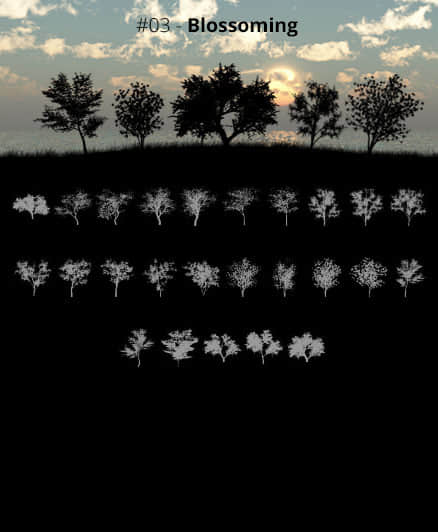 25种大树、树木剪影、阴影造型Photoshop树木笔刷