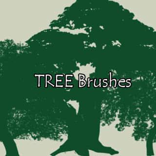 大树剪影图形、树荫造型PS笔刷素材 树荫笔刷 大树笔刷  plants brushes