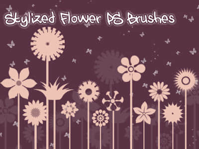 漂亮的矢量图形式鲜花花朵图案Photoshop笔刷素材 植物花纹笔刷  flowers brushes