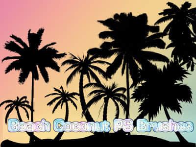 海边椰子树剪影图案PS笔刷素材下载