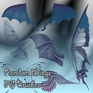 蝙蝠恶魔翅膀、天使的翅膀羽翼、昆虫蝴蝶的翅膀PS笔刷素材 魔鬼翅膀笔刷 蝴蝶翅膀笔刷 蝙蝠翅膀笔刷 昆虫翅膀笔刷 恶魔笔刷  wings brushes
