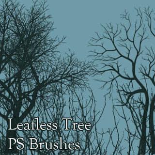 冬天的大树剪影、干枯的树木、光秃秃的树背景PS笔刷素材 树木剪影笔刷 枯树笔刷 干枯树木笔刷 大树笔刷  plants brushes