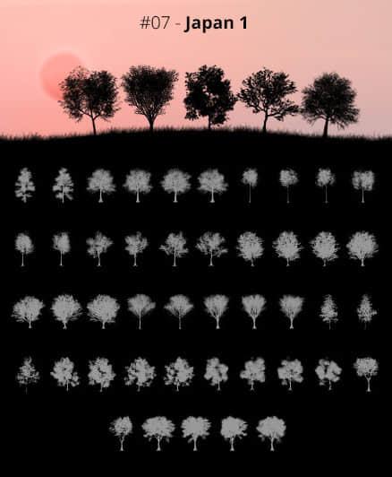 45种超级大树、树木僧侣、森林大树阴影剪影图形Photoshop笔刷素材下载 森林笔刷 树荫笔刷 树木剪影笔刷 大树笔刷 剪影笔刷  plants brushes