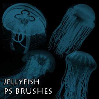 海洋生物水母Photoshop笔刷素材下载 海洋笔刷 海洋生物笔刷 水母笔刷  %e5%8a%a8%e7%89%a9%e7%ac%94%e5%88%b7