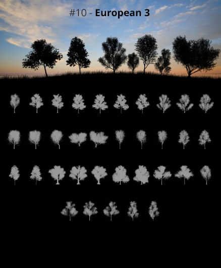 高清的大树、树木阴影剪影、树荫效果Photoshop笔刷素材下载 树荫笔刷 树木笔刷 大树阴影笔刷 大树笔刷 大树剪影笔刷  plants brushes