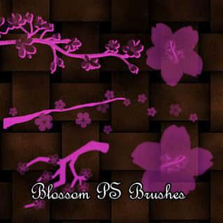 樱花、树枝花朵图案Photoshop花纹笔刷
