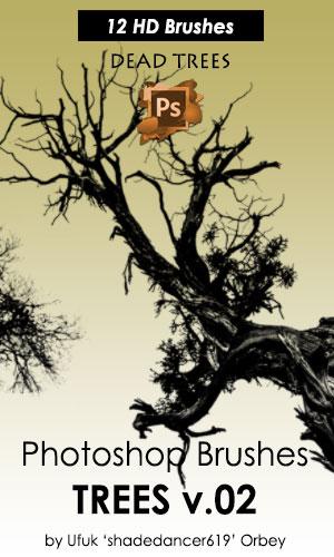 12种枯死的树木树枝造型Photoshop笔刷素材下载 树枝笔刷 树干笔刷 枯树笔刷  plants brushes