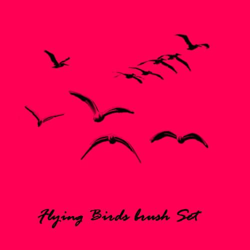 飞鸟剪影图形Photoshop笔刷素材