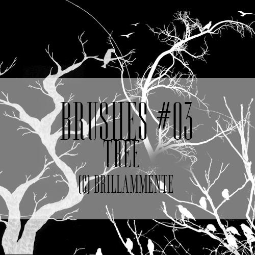 大树、枯树鸟剪影图形Photoshop笔刷素材下载