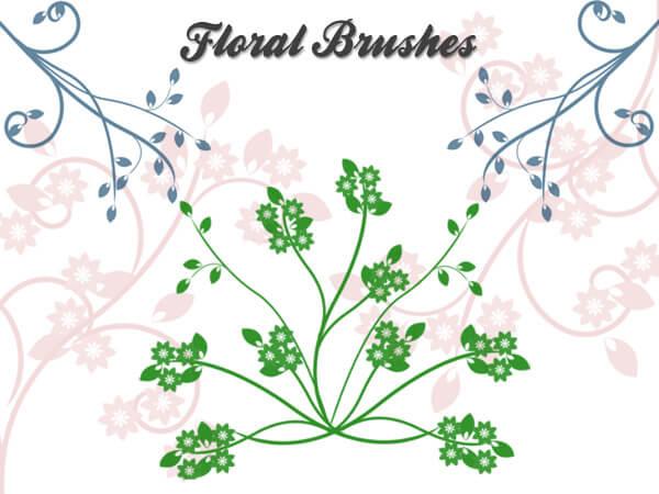 漂亮优美的植物系花纹图案PS笔刷下载