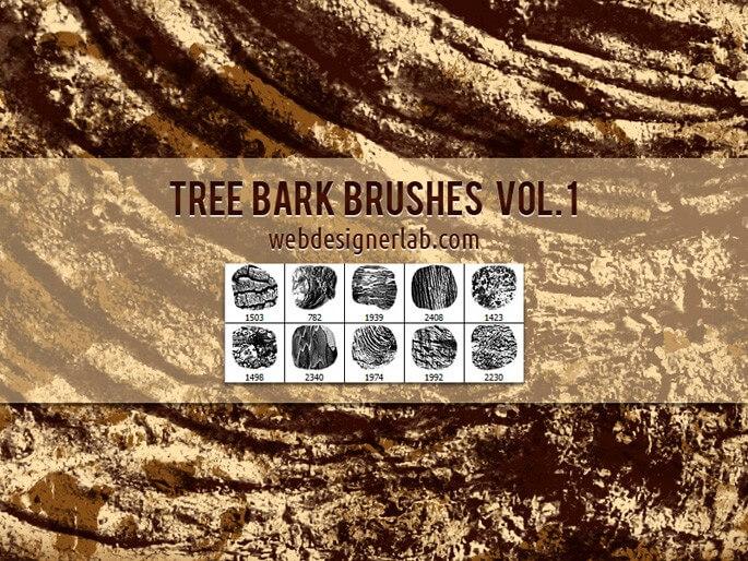 干枯是大树树皮、树木表面纹理图案PS笔刷素材下载