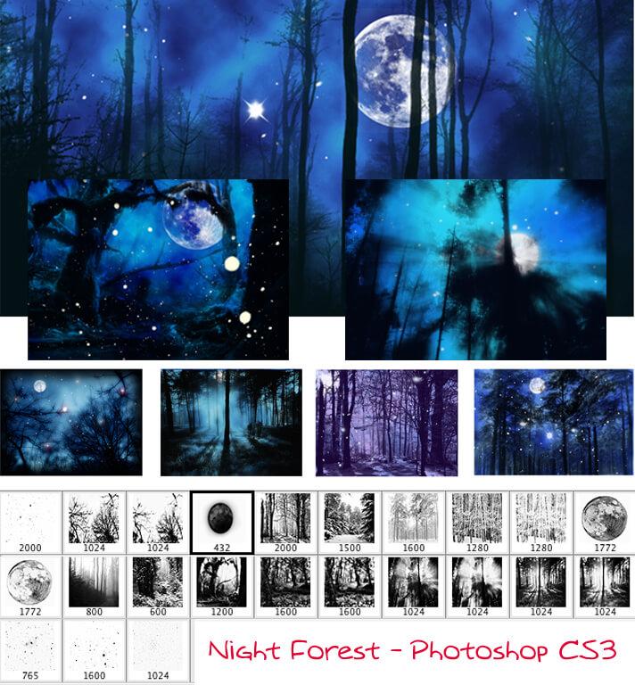 夜晚森林背景PS笔刷素材 森林笔刷 夜晚笔刷  background brushes