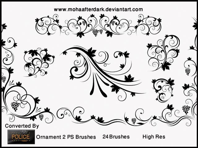 优美的贵族植物花纹图案PS笔刷素材下载 高贵花纹笔刷 艺术花纹笔刷 植物花纹笔刷 印花笔刷  flowers brushes