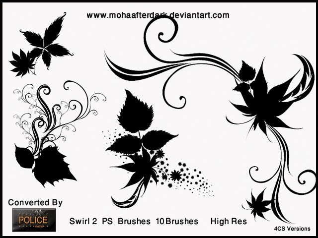 漂亮的艺术系植物叶子花纹图案PS笔刷素材下载 艺术花纹笔刷 植物花纹笔刷  adornment brushes flowers brushes