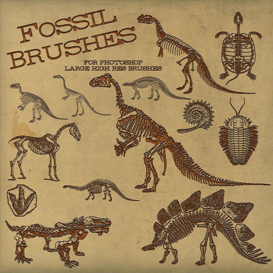 侏罗纪恐龙骨骼化石图案Photoshop笔刷下载 恐龙笔刷 恐龙化石笔刷 侏罗纪笔刷  other brushes