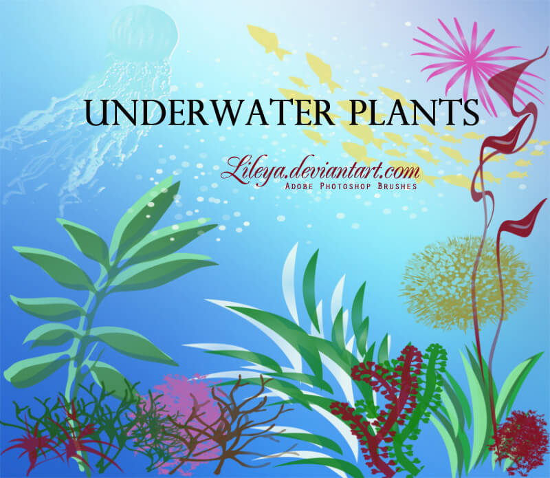 简单的海底生物、海草、珊瑚、鱼群图案PS笔刷素材下载