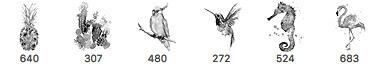 创意手绘水彩水墨造型菠萝、鹦鹉、海马、蜂鸟、火烈鸟PS笔刷素材下载