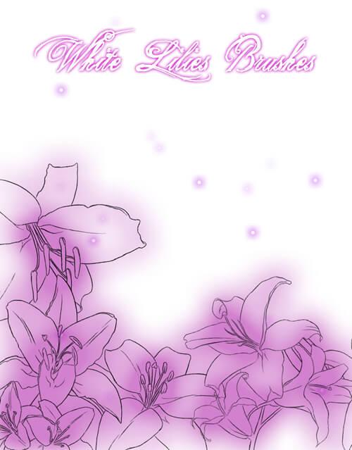 手绘鲜花花瓣花朵图案PS笔刷素材下载
