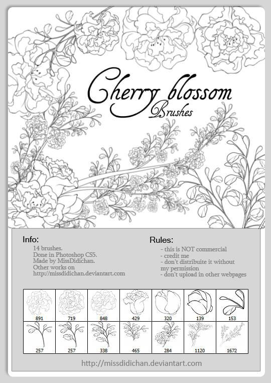 漂亮的手绘线框式鲜花花朵图案、盛开的枝条与花朵PS笔刷素材下载