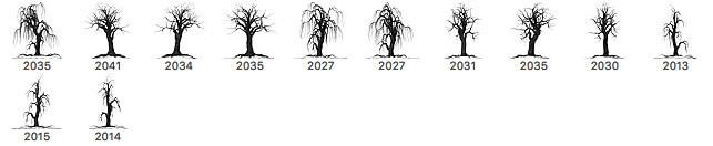 12种柳树形状、枯树、大树剪影团案Photoshop笔刷素材下载