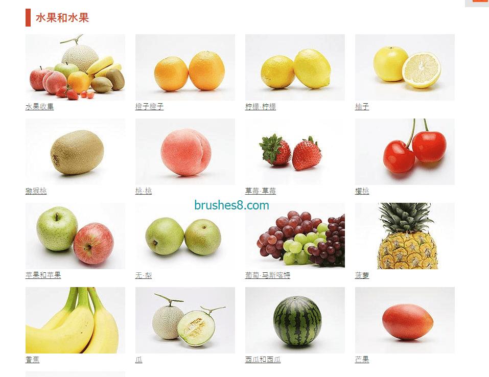 Food.foto - 可商用的免费专业摄影照片图库、女性模特图库、食品饮料图库、平面设计CG素材照片图库