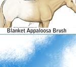 斑纹图案、马匹的斑点纹理效果Photoshop笔刷素材