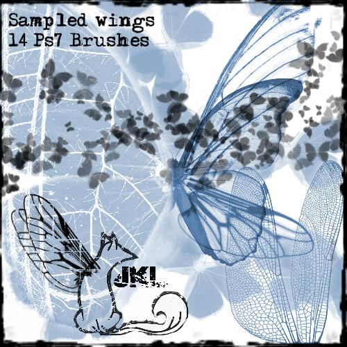昆虫翅膀、蝴蝶翅膀PS笔刷素材下载