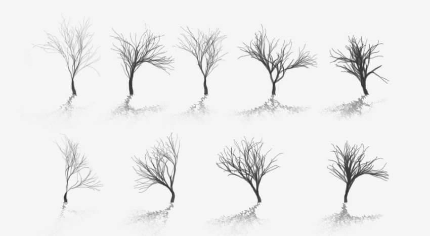 树木、枯树、树干PS笔刷素材下载