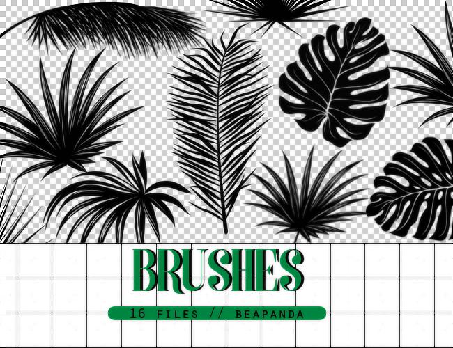 热带植物叶子图形Photoshop笔刷素材下载